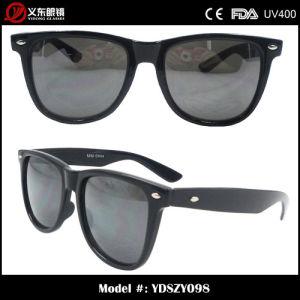 Sunglasses (YDSZY098)