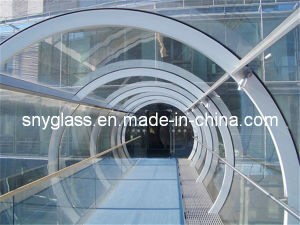 Curved Laminated Glass with Sgp Film pictures & photos