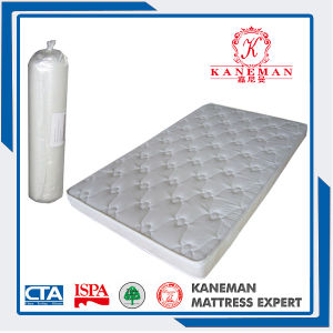 China Mattress Manufacturer Factory Hot Sale Rolled Foam Mattress pictures & photos