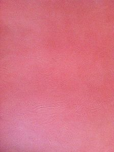 PU Leather for Shoes (YEF86XX-42ECT) pictures & photos