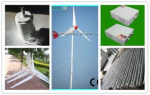 Windmill Turbine System (HF3.2-1000W)
