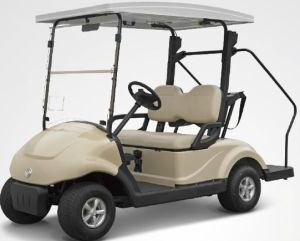 Solar Golf Cart Electric Vehicle for 2 Person Made by Dongfeng Motor on Sale