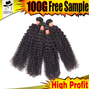 Brazilian Hair of 100% Human Hair with Curly Weave pictures & photos