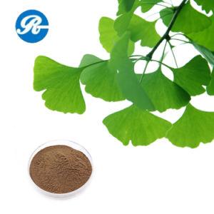 Ginkgo Biloba Extract Flavones 24% Lactones 6% Ginkgo Biloba Extract pictures & photos