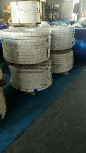 Good Quality Stainless Steel Strips (316L) pictures & photos