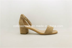 Simple Fashion Strap Chuny Heel Leather Lady Sandals pictures & photos