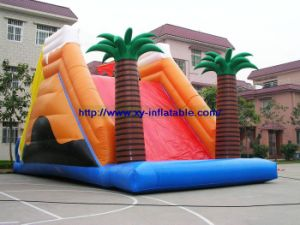 Inflatable Water Slide (WAT-06)