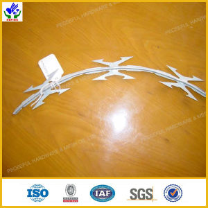 Galvanized Razor Barbed Wire (HPRW-0609) pictures & photos