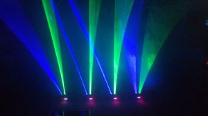 Laser Light with 9head RGB & Single Green Opptional pictures & photos