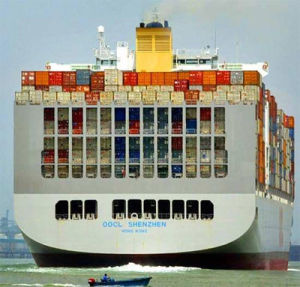 Ocean Freight From China to Worldwide Ports / Freight / Shipping / Sea Freight / Sea Shipping / Ocean Shipping