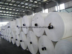 China Transparent PP Woven Fabric for Packaging pictures & photos