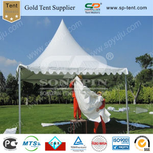 Garden Pagoda Tent 4X4m pictures & photos