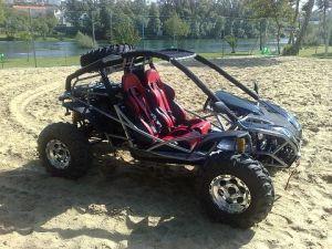 500cc Go Kart (DF500GK) with EEC
