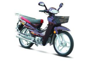 Motorcycle (HN110-2C)