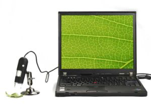DM-UM012B USB Microscope with 2.0m pictures & photos