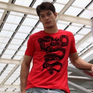 Men′s Fashion Cotton T-Shirt (AS001)