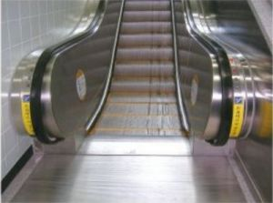 30 Degree 1000mm Heavy Duty Escalator for Public Places (XNF-025) pictures & photos