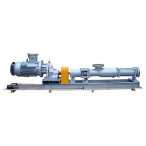 G Series Screw Pump for Food pictures & photos