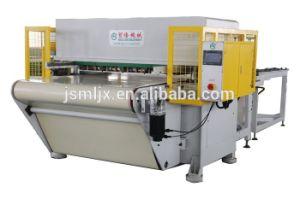 Ml Supply Automatic Belt Die Cutting Machine pictures & photos