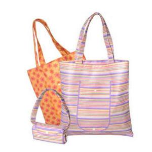 Non Woven Folding Shopping Bag (FBG09-013)