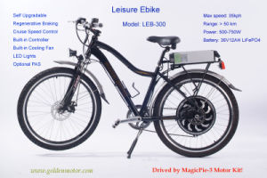 Electric Bike (LEB-300) pictures & photos