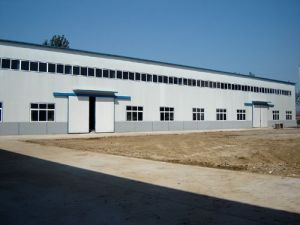 ISO Cerified: Steel Structure Large Span Factory Building (LTW161) pictures & photos