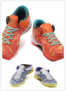 2013 New Model Sport Shoes