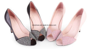 Cheap Women Low Heel Shoes in Small Sizes Ladies Shoes