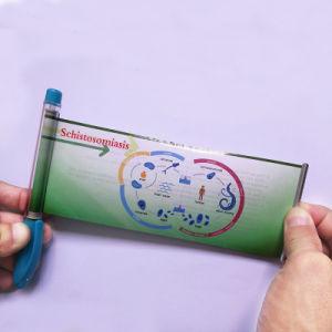 Gel Ink Promotion Banner Pen (B106) pictures & photos