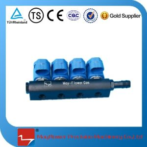 CNG Gas Fuel Rail Injector pictures & photos