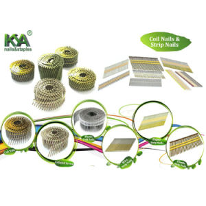 15 Deg Wire Collated Nails for Construction, Decoration, Packaging pictures & photos