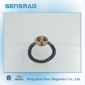 C5~C8 Polished Permanent Ferrite Magnet Manufacturer with RoHS pictures & photos