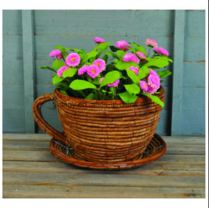 Wicker Cup and Saucer Shaped Garden Planter