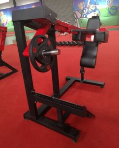 Bodybuilding Equipment Hammer Strength / Flat Bench (SF1-1034) pictures & photos