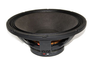 18 Inch RMS1000W Speaker with 220 Magnet pictures & photos