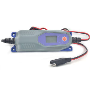 DC 12V 1A /2A Lithium Battery Charger pictures & photos