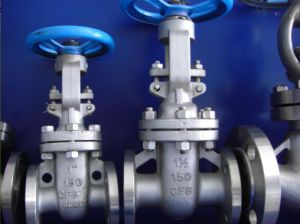 Stainless Steel Gate Valve with Flange (Z41) pictures & photos