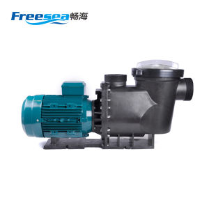 Copper Motor Pump for Swimming Pool pictures & photos