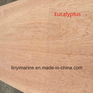 Eucalyptus Face and Back Poplar Core Plywood for Furniture BB/CC pictures & photos