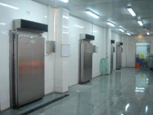 Cold Room Project Chiller 30 Ton Vegetable Laiao) pictures & photos