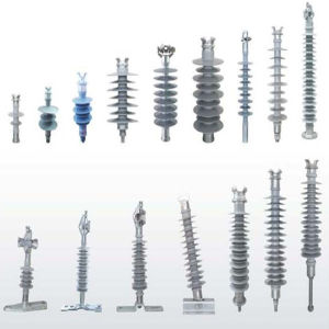 Fxbw-24/100 24kv 100kn Composite Insulator for Power Transmission pictures & photos