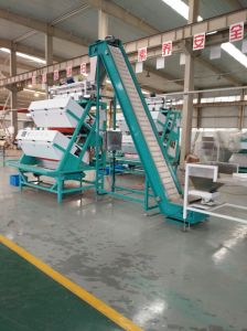 High Production White Tea CCD Color Sorter with Low Damage Rate pictures & photos