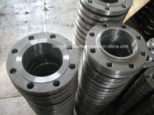 Forged Flange, Pipe Flange pictures & photos