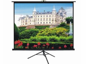 90 Inch Portable & Movable Office Projector Matte White Tripod Projection Screen for T90uwv1 pictures & photos