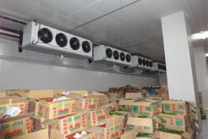 B1 Level Fireproofed Cold Room Blast Freezer pictures & photos