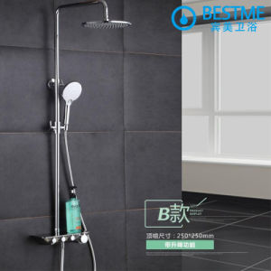 Best Price Three Function Chrome Shower Set (BF-60012) pictures & photos