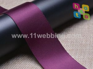 Polyester/Nylon/Polypropylene/Cotton/Jacquard Webbing in Stock Sale pictures & photos
