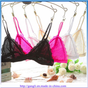 Hot Selling Ladies Inner Wear Lace Sexy Lingerie Bra