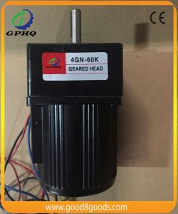 Gphq Ratio 100 AC Gear Motor pictures & photos