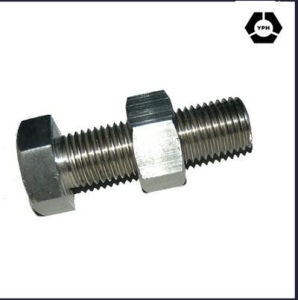 HDG A490 Type1 Heavy Hex Bolts with Nut pictures & photos